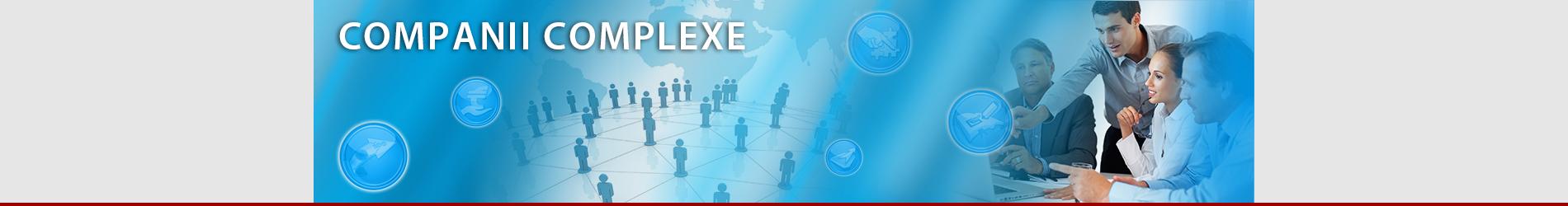 banner_site_companii_complexe