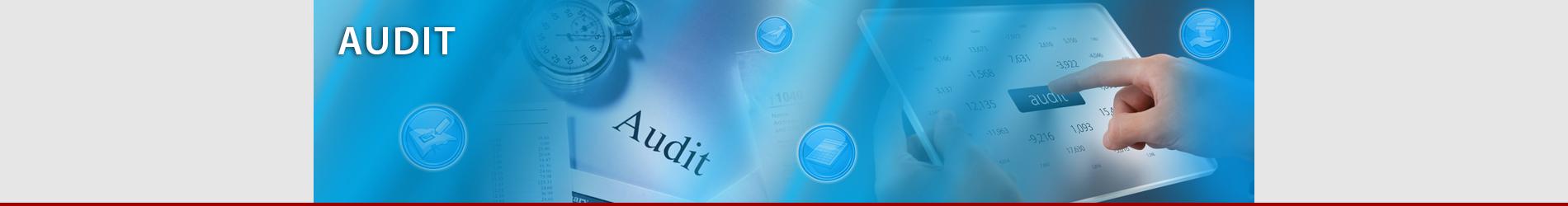 banner_site_individual_audit
